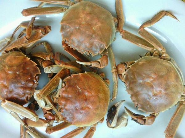 zhuqy做的蒸螃蟹的做法