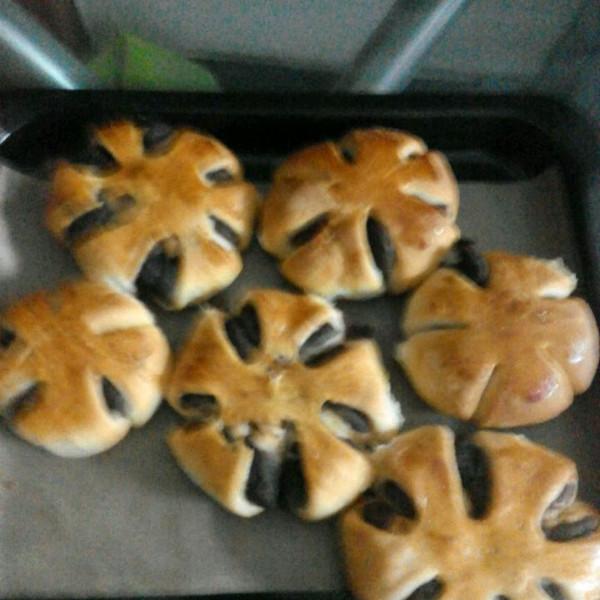 动物趣味吃面包