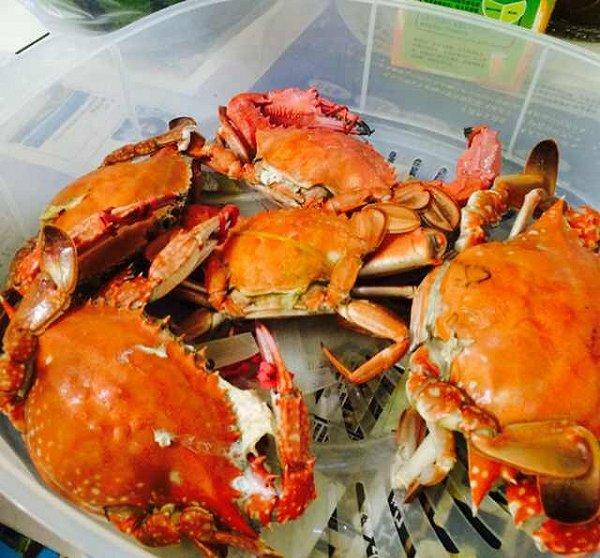 stud做的蒸螃蟹的做法