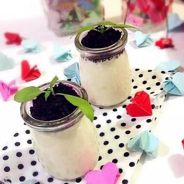 自制酸奶盆栽