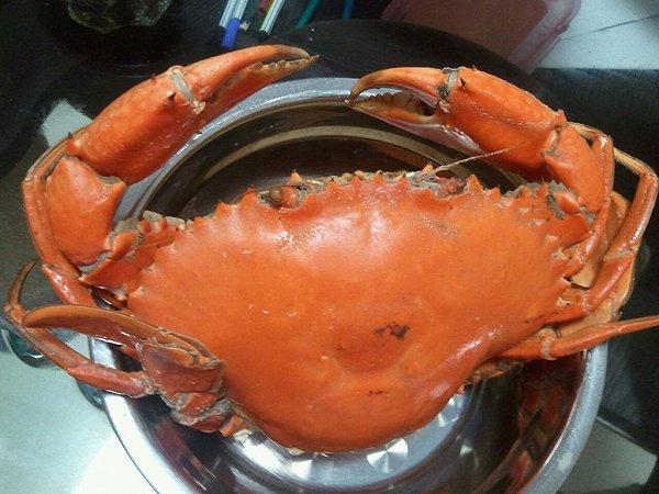 凡-天下的煮螃蟹做法的学习成果照